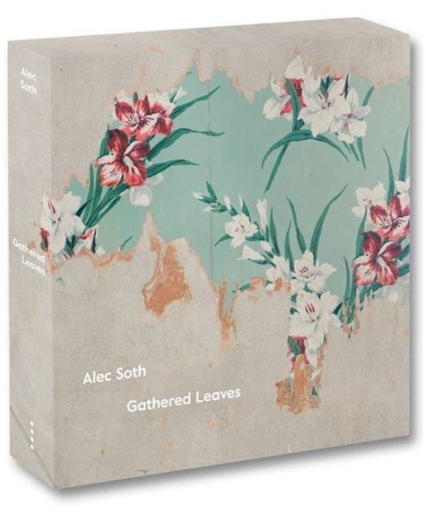 Alec Soth『Gathered Leaves』限定サイン入り - BLIND BOOKS